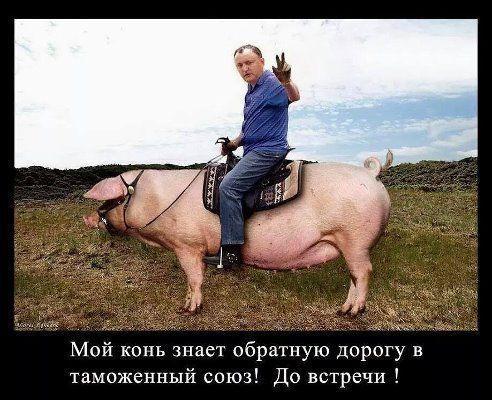Додон запретил участие молдавских военных в международных военных учениях в Украине - Цензор.НЕТ 924