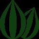 Семена овощей для профессионалов