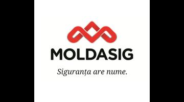 Moldasig S.A.