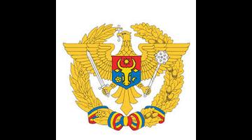 Militari profesioniști în unitățile Armatei Naționale