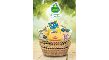 SA Lactis