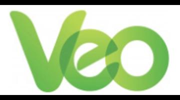 VEO Worldwide Services