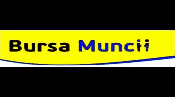 Mecanici reparatie camioane (tir) scania - (islanda)