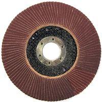 ProLine Диск шлифовальный лепестковый 125мм 44813