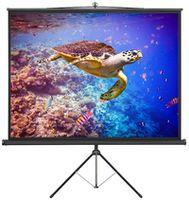 Экран для проектора Atria Tripod Eco TRM-AV-96
