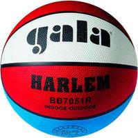 Gala Harlem (BB7051)
