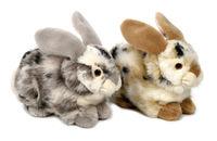 Venturelli Bunny Oreste (710827)