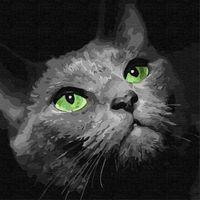 Картина для рисования по номерам Хищный взгляд 30x30 см  4163