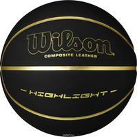 купить Мяч баскетбольный Wilson HIGHLIGHT 295 BLGO (650gr) WTB068523 (525) в Кишинёве