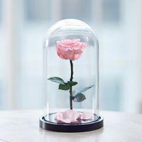 купить Вечная Розовая Роза в колбе в Кишинёве