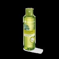 Fluid pentru detoxifierea părului