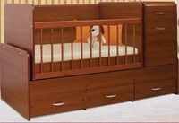 Bambini Comfort