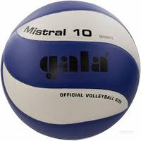 Мяч волейбольный Gala BV 5661 C  Mistral