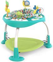 Bright Starts развивающий Игровой центр Playful Pond 2 в 1