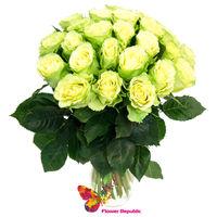 cumpără Trandafir VERDE Ecuador 60-70 CM Pret la o bucata în Chișinău