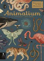 Animalium(eng)