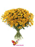 купить Хризантема кустовая мини оранжевая поштучно в Кишинёве