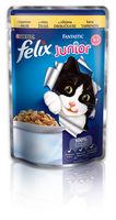 FELIX Fantastic Junior (с курицей), 100гр