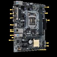 ASUS H110M-D Intel H110