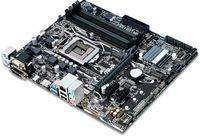 купить ASUS PRIME B250M-A, Socket 1151, Intel® B250, Dual 4xDDR4-2400, 1xPCIe X16, CPU Intel graphics, DVI, HDMI, 6xSATA3, 2x M.2 slot, 2xPCIe X1, ALC887 7.1ch HDA, GigabitLAN, 1xUSB3.0/Type-C, 4xUSB3.0, 5X Pro.III, mATX в Кишинёве