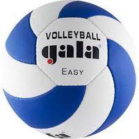 Мяч волейбольный Gala BV 5083 C Easy