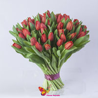 купить Красные голландские тюльпаны поштучно в Кишинёве