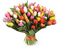 купить Букет из 50 тюльпанов микс в Кишинёве