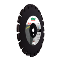 1A1RSS/C1S-W 300x2,8/1,8x10x25,4-18 F4 Sprinter Plus