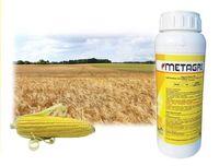 Метагри - гербицид для защиты посевов пшеницы - Агри Сайенсис