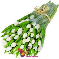 купить Букет  Белых тюльпанов в Кишинёве