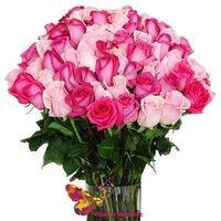 cumpără Buchet din 51 roz-zmeura Trandafir Ecuador 70-80cm în Chișinău