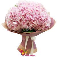 купить Нежный букет розовой гортензии в Кишинёве