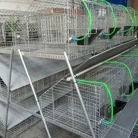 Клетка для кроликов модель 40-24