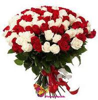 купить Монобукет из 101 Красно-белой розы 60-70 cm в Кишинёве