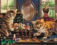 Pisicile prin casă
