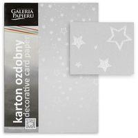 ARGO Картон GPAPIERU Stars A4, 220 г/м2, серебристый