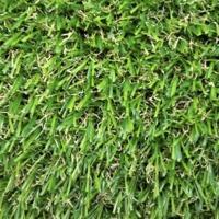 Ландшафтная трава, MADRID (4m.)