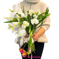 купить Букет из 15 белых ирисов в Кишинёве