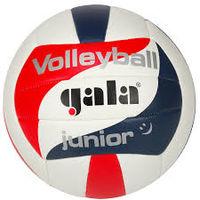 Мяч волейбольный Gala Junior