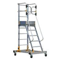 купить Передвижная лестница с платформой RD0012 в Кишинёве