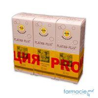 Flatam-Plus® pic. orale, sol. 0,5 % + 1%/ml 30ml N1 (Set 2+1Gratis)(TVA20%)