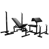 купить Workout Bench MAGNUS CLASSIC MC-L011 with Accessories 20728 (dupa comanda) в Кишинёве