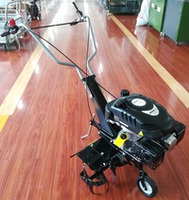 A Motosapa WORKer 139