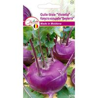 купить Семена  Капуста кольраби Виолетта 1,5 гр DS в Кишинёве