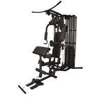 Мультистанция (макс. 150 кг) inSPORTline Profi Gym C100 18401 (5737)