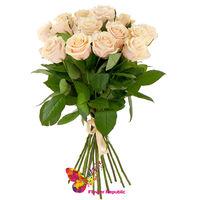 купить Букет из 15 Кремовых роз Премиум  80-90СМ в Кишинёве