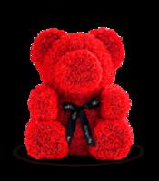 cumpără Ursul de trandafiri rosii 70 cm în Chișinău