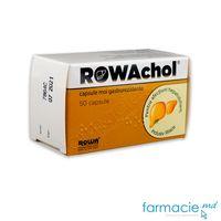 Rowachol® caps. moi gastrorez.   N50