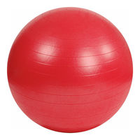 Надувной мяч Lijian для фитнеса с насосом, диаметр 75 см, YG-034