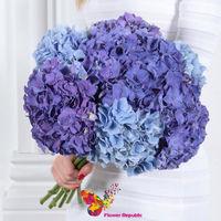 купить Букет из синей и голубой готензии в Кишинёве